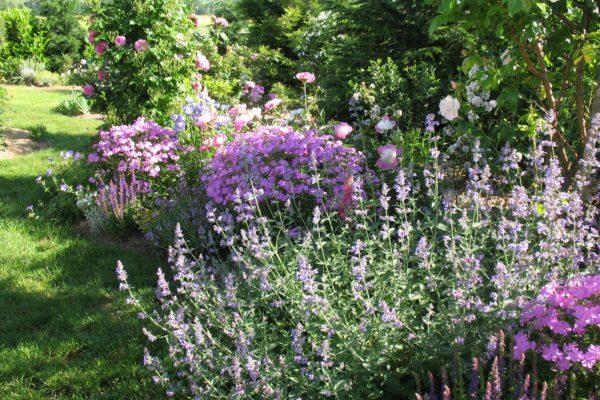 jardinage-a-domicile